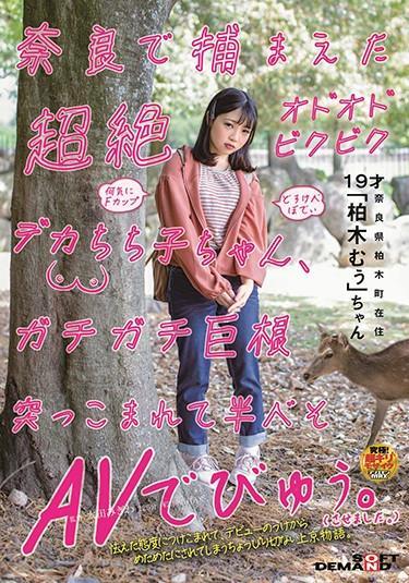 "[SDMU-952] –  Transcendence Odoobibikudeka Chichiko-chan Caught In Nara Gachigachi Big Cock Was Plunged And Half-brow AV. (I Was Allowed To. ) ""Kashiwagi Mukai"" Who Lives In Kashiwagi-cho, NaraKashiwagi MuuSolowork Girl Uniform Big Tits Debut Production Huge Cock"