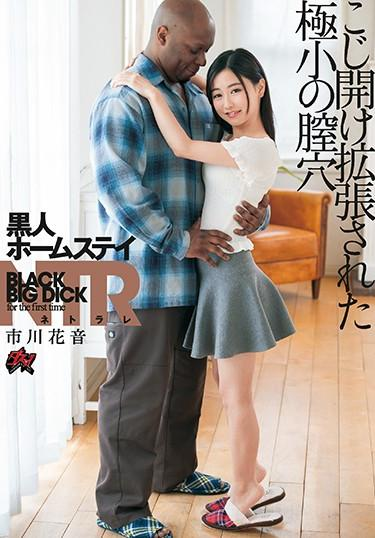 [DASD-690] –  Black Homestay NTR Plucked And Expanded Micro Vagina Ichikawa KanonIchikawa KanonCreampie Solowork Tits Black Actor Cuckold Huge Cock