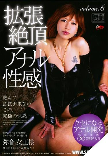 [FT-86] –  Anal Sexual Feeling Volume.6 Extended ClimaxSM Anal Toy Bondage